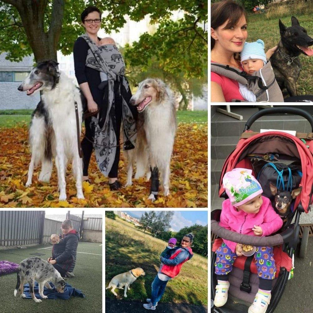 nošení dětí a psi